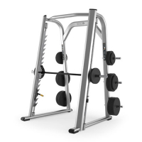 PRECOR Discovery Line Smith Machine DPL802