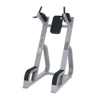 PRECOR/ICARIAN Icarian Benches - Racks Vertical Knee Up/Dip CW702