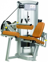 CYBEX Seated Leg Curl 21461S