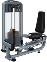 PRECOR Discovery Series Selectorised Line Seated Calf Extension DSL623