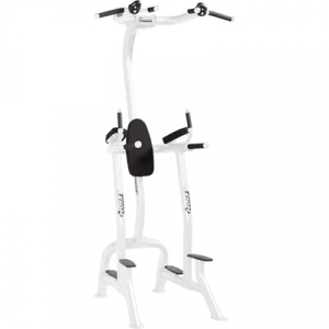 HOIST Commercial Freeweight Line Fitness Tree CF-3962s